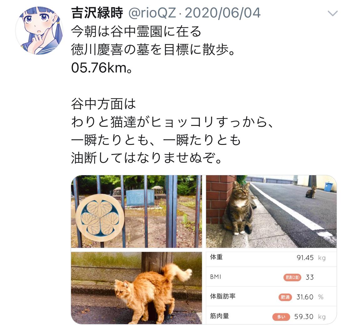 f:id:ryokuji:20201210121229j:plain