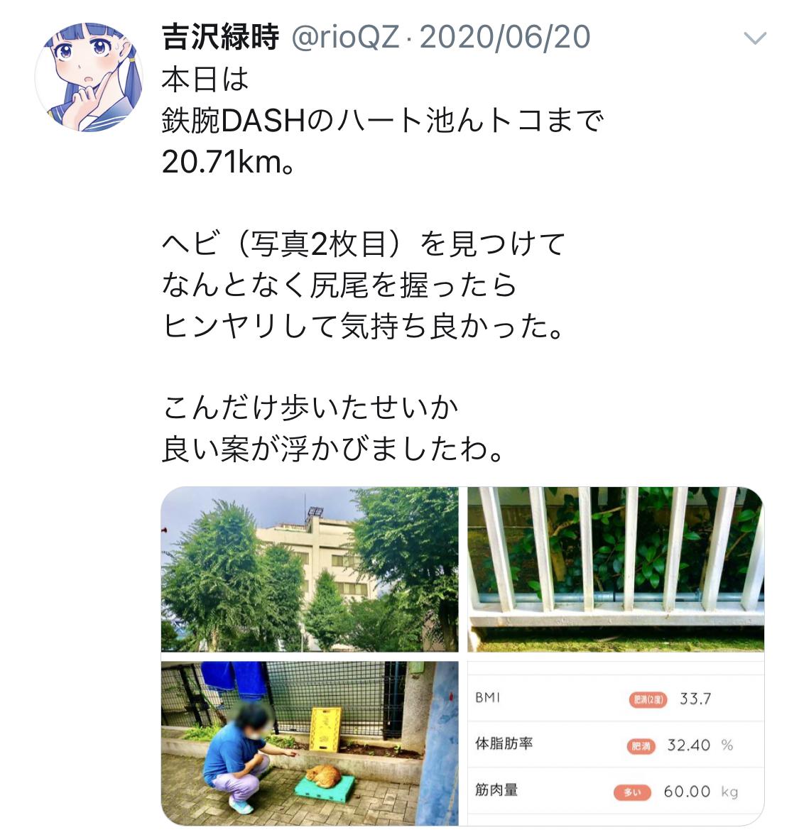 f:id:ryokuji:20201210121425j:plain