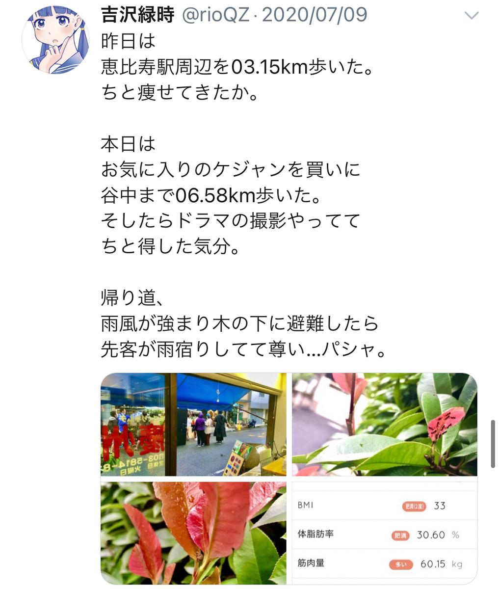 f:id:ryokuji:20201211145717j:plain