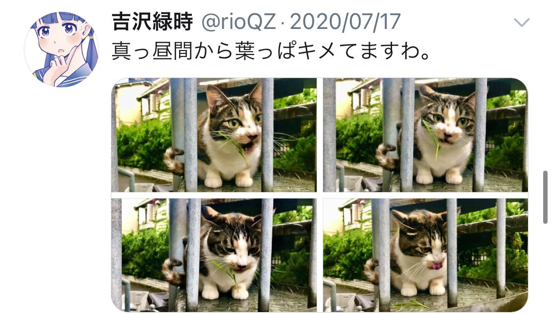 f:id:ryokuji:20201211145816j:plain