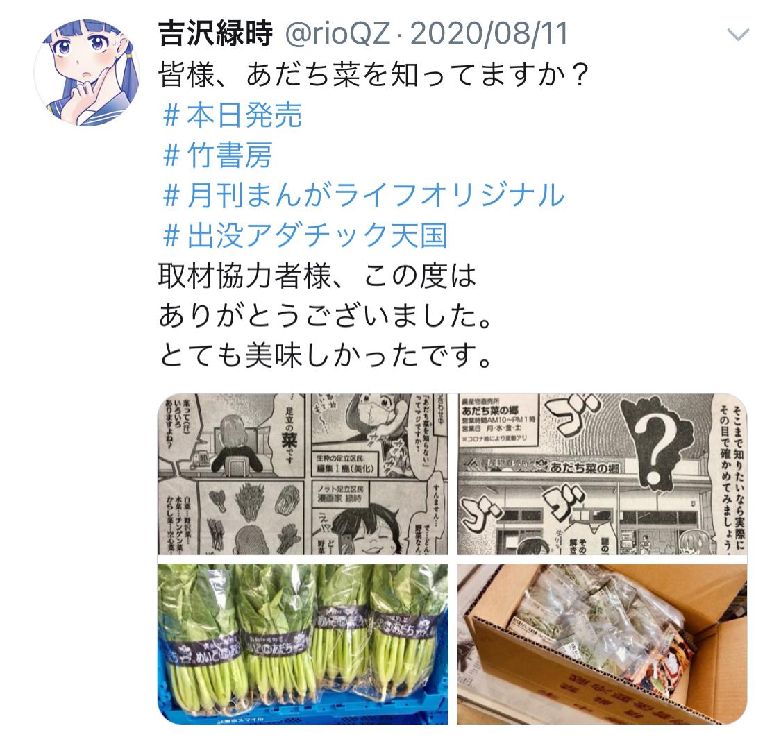 f:id:ryokuji:20201212201534j:plain