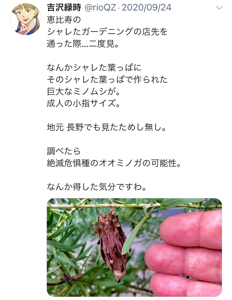f:id:ryokuji:20201220151723j:plain