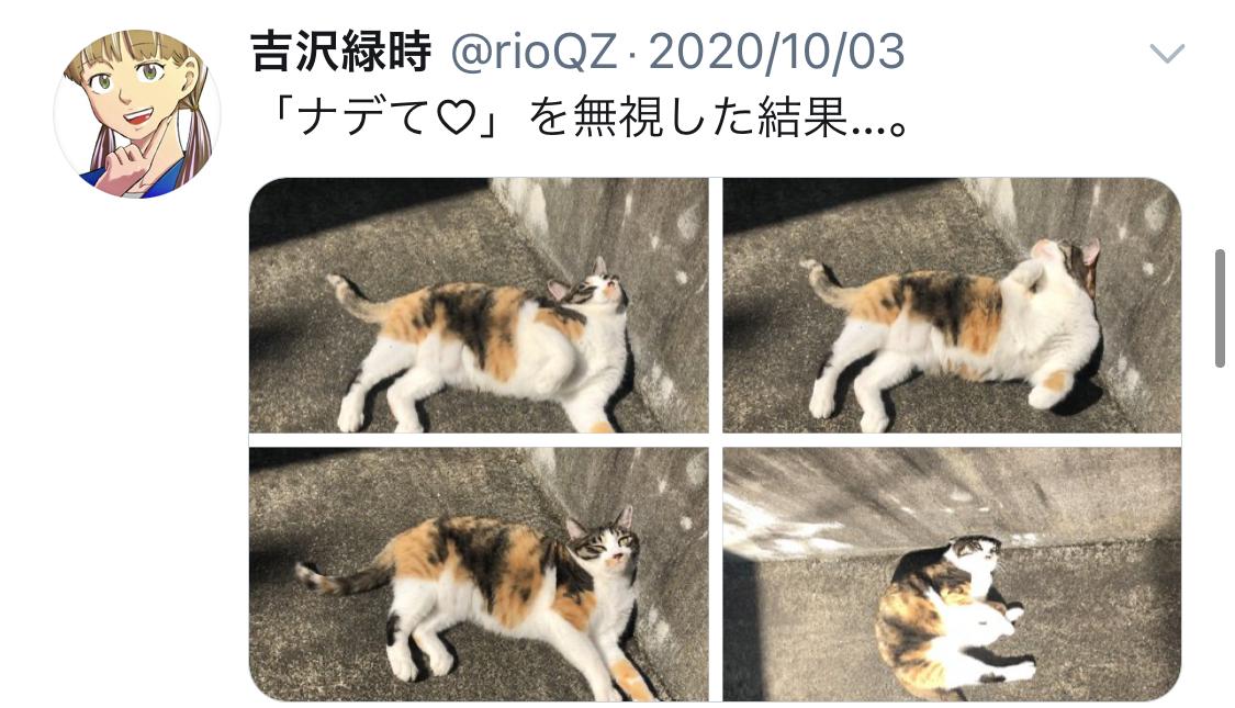 f:id:ryokuji:20210101203756j:plain