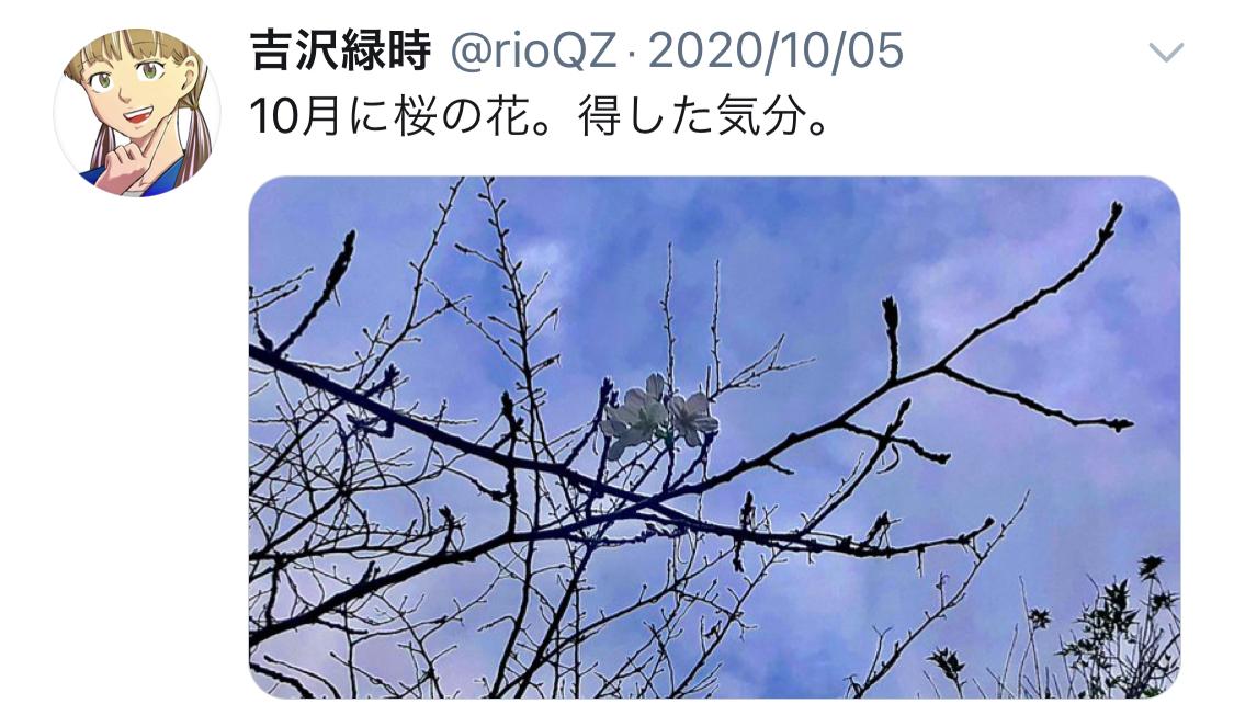 f:id:ryokuji:20210101203819j:plain
