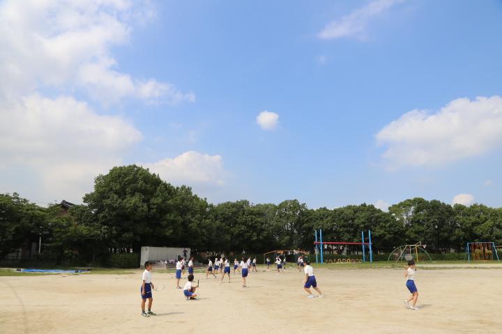 f:id:ryokuyo-e:20160805121311j:plain