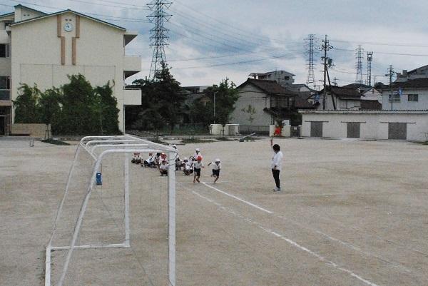 f:id:ryokuyo-e:20170607124546j:plain