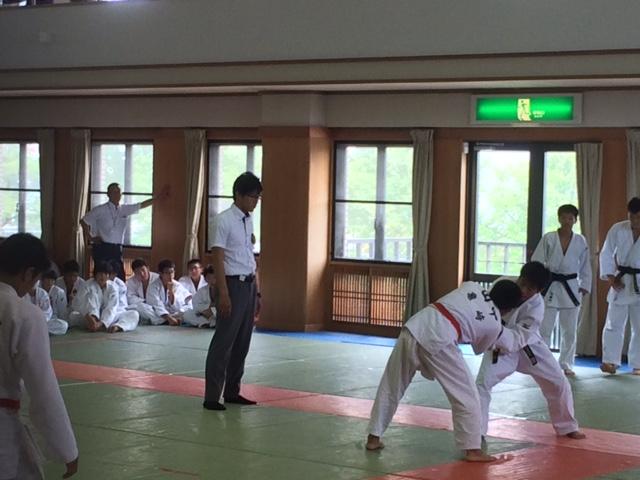 f:id:ryokuyo-e:20170721134615j:plain