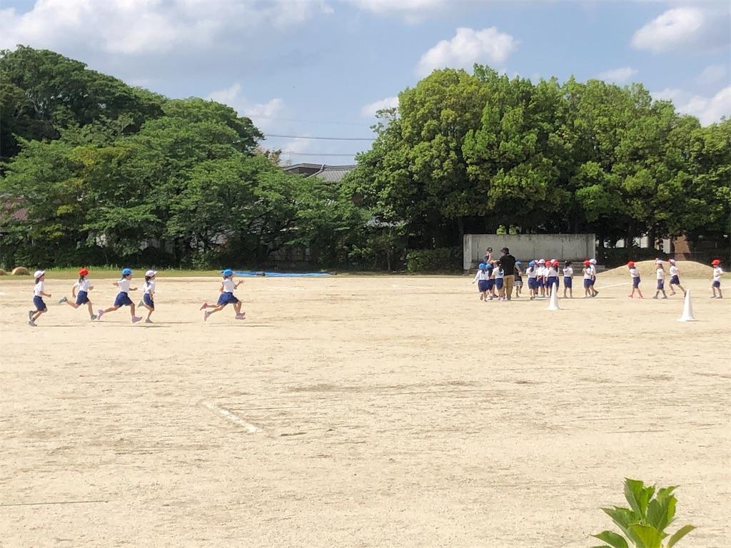 f:id:ryokuyo-e:20190517092400j:image