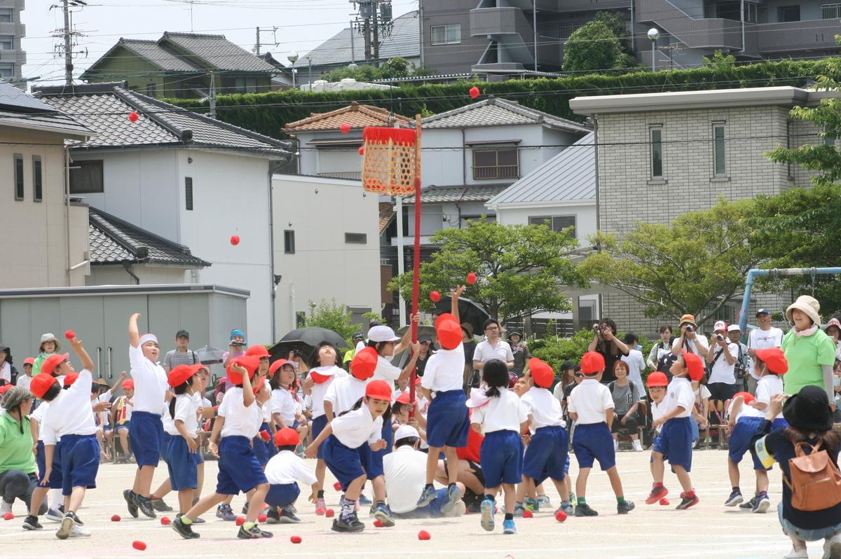f:id:ryokuyo-e:20190601124235j:plain