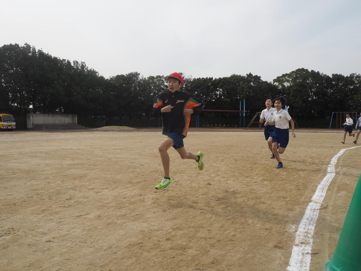 f:id:ryokuyo-e:20200207195926j:plain