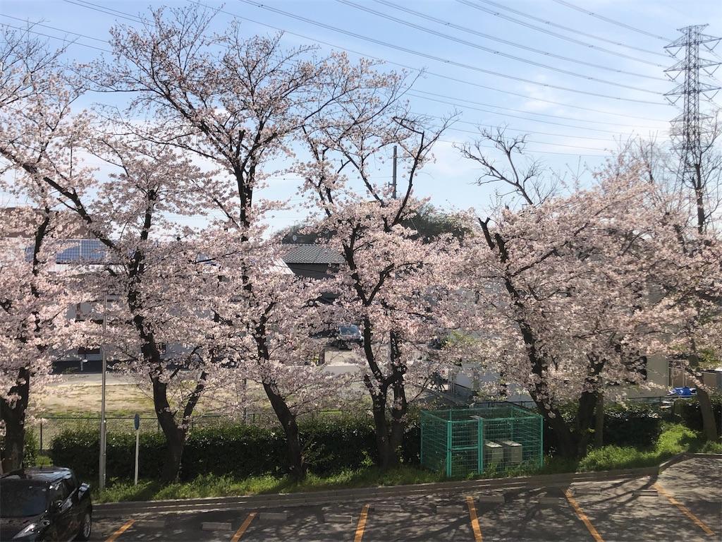 f:id:ryokuyo-e:20200407085922j:image