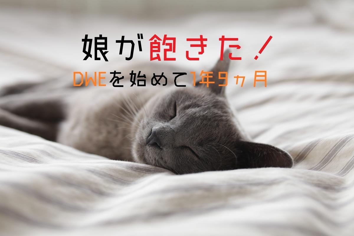 f:id:ryosaka:20190315060227j:plain