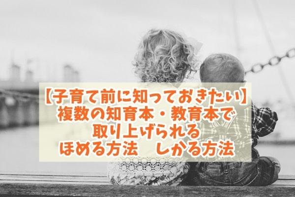 f:id:ryosaka:20200529074416j:plain