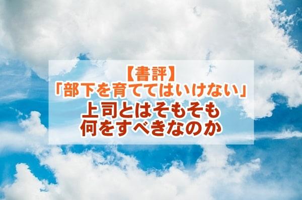 f:id:ryosaka:20210510063048j:plain