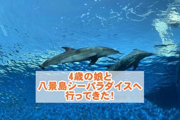 f:id:ryosaka:20210531065327j:plain