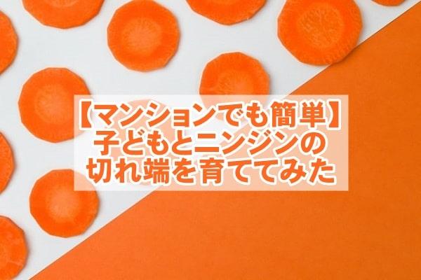 f:id:ryosaka:20210919060617j:plain
