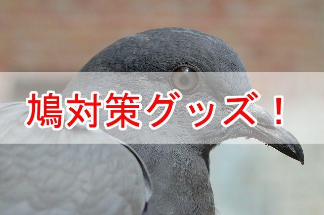 f:id:ryosuke888:20170617150418j:plain