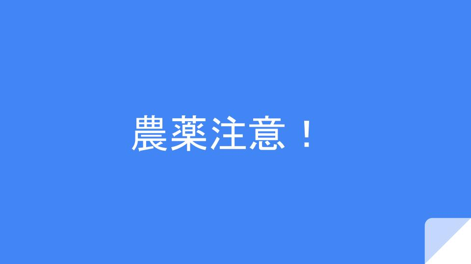 f:id:ryota0622:20161118191100j:plain