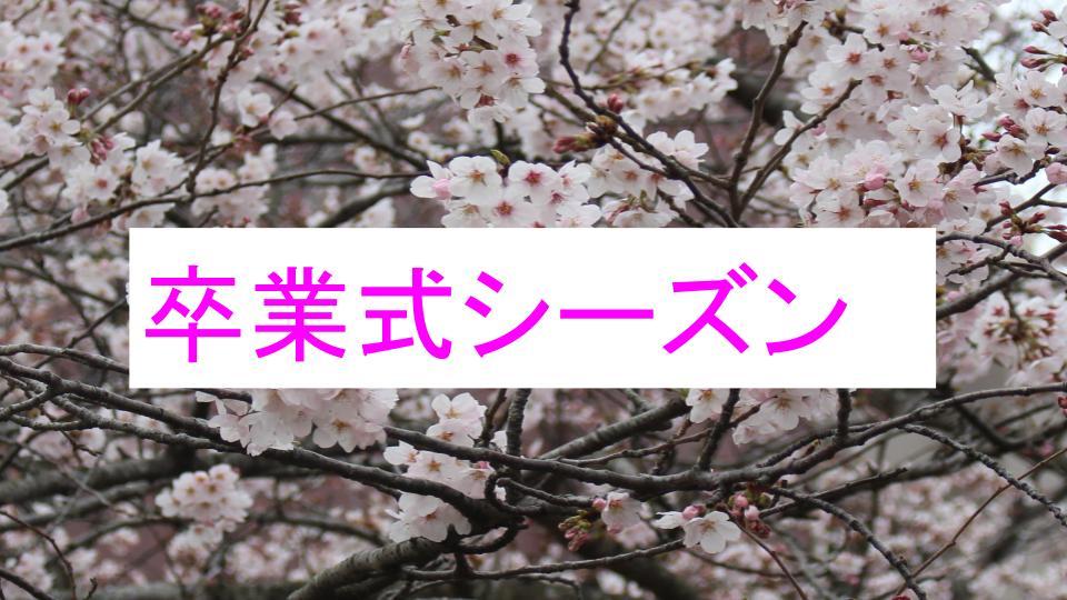 f:id:ryota0622:20170224232621j:plain