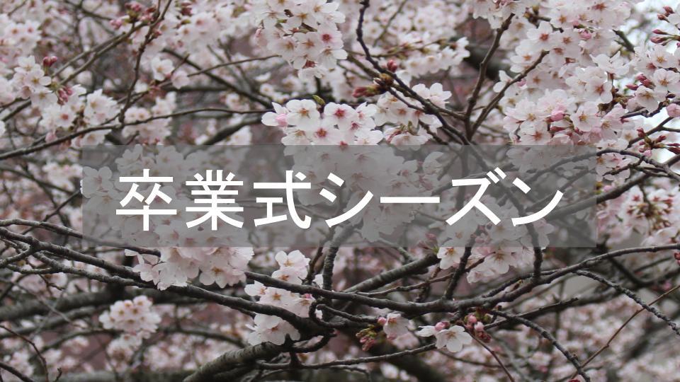 f:id:ryota0622:20170227213056j:plain