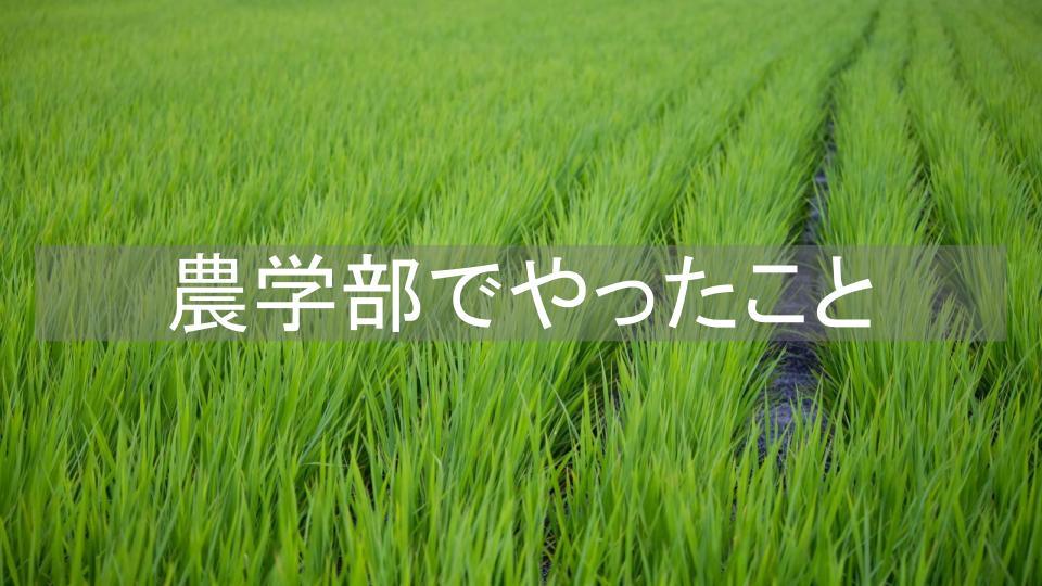 f:id:ryota0622:20170305014638j:plain