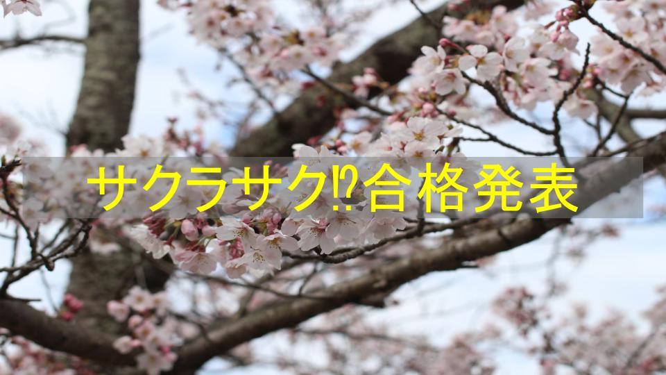 f:id:ryota0622:20170307011754j:plain