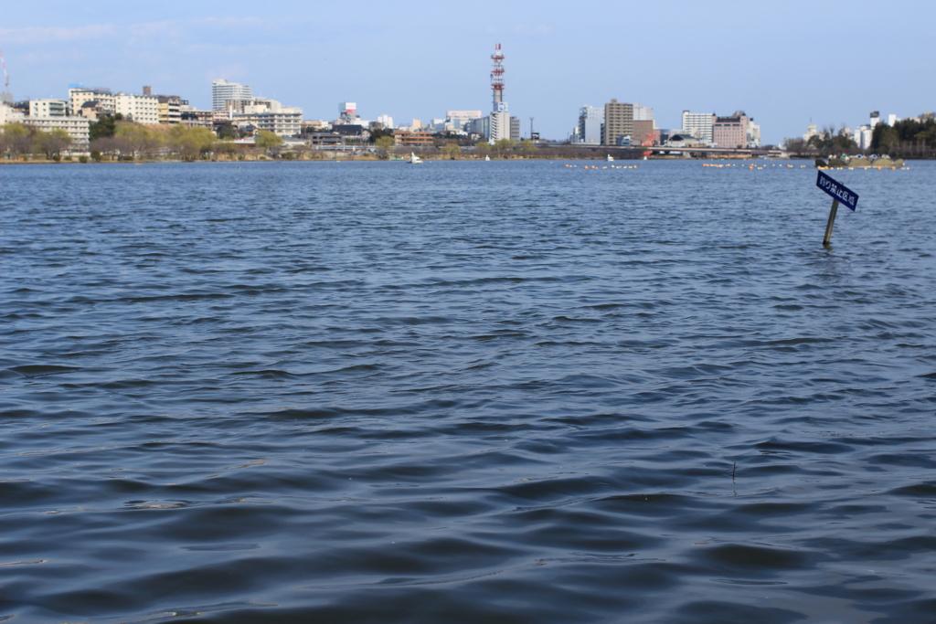 千波湖、バックに水戸の市街地