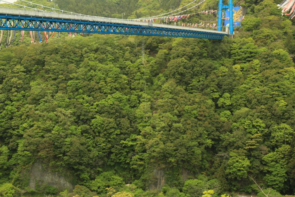 竜神大吊橋でバンジージャンプ