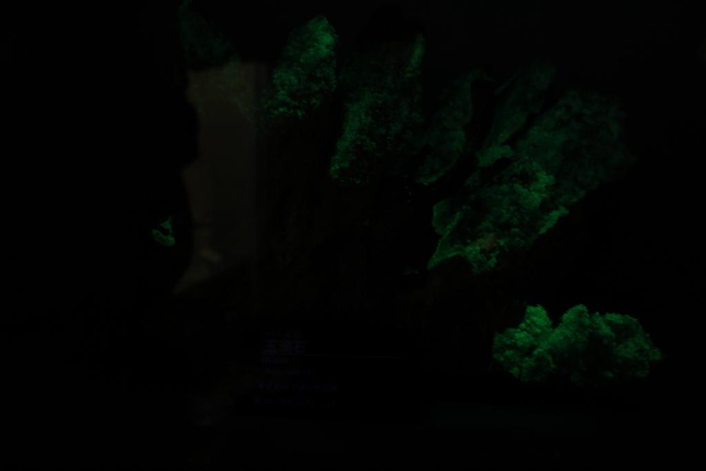 暗闇で光る玉滴石