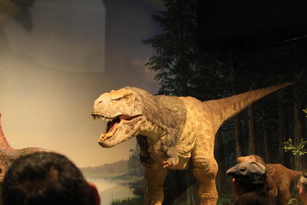羽毛のついたティラノサウルス