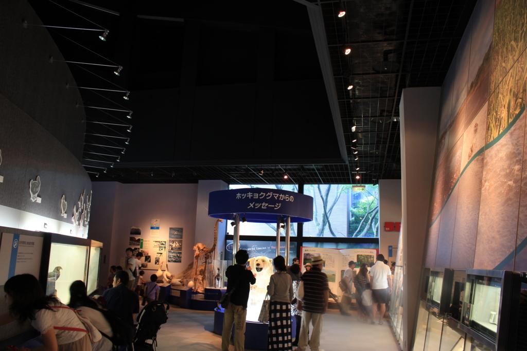 人間と環境の展示スペース