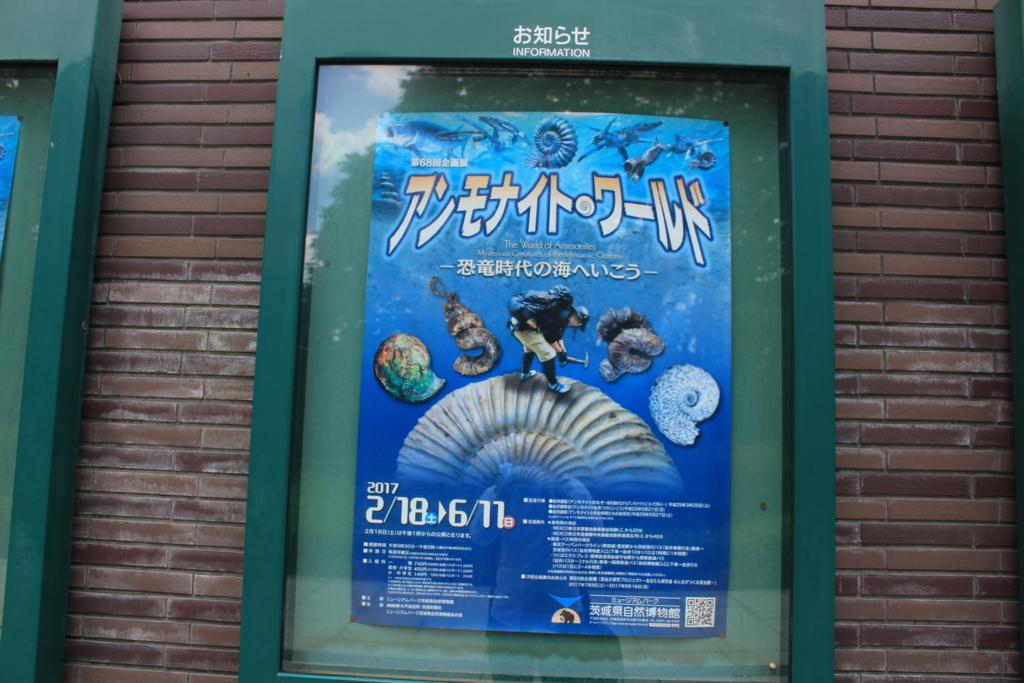 アンモナイトワールドのポスター