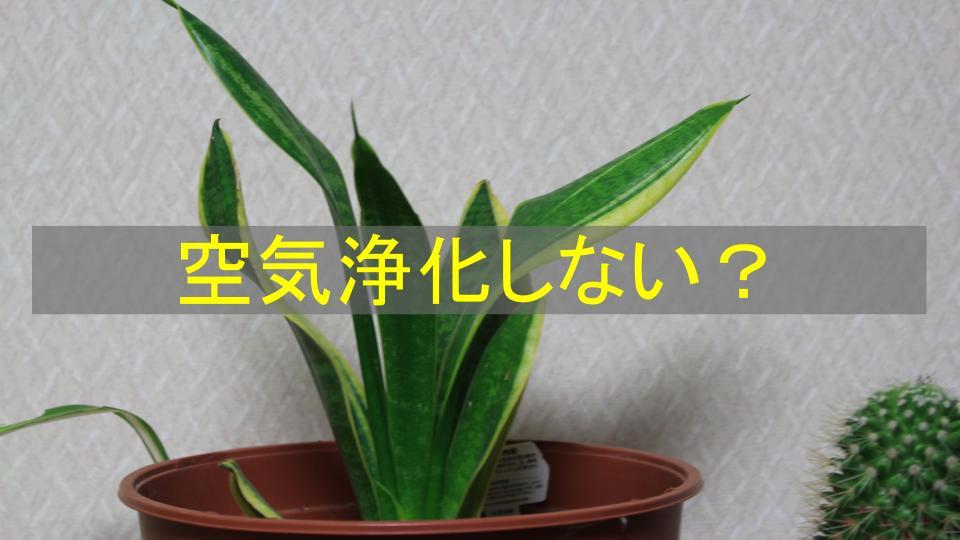f:id:ryota0622:20170808200954j:plain