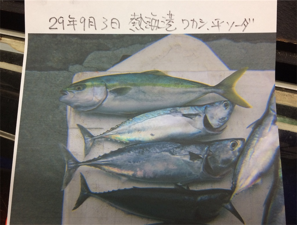 f:id:ryotadohi:20170912233101j:plain