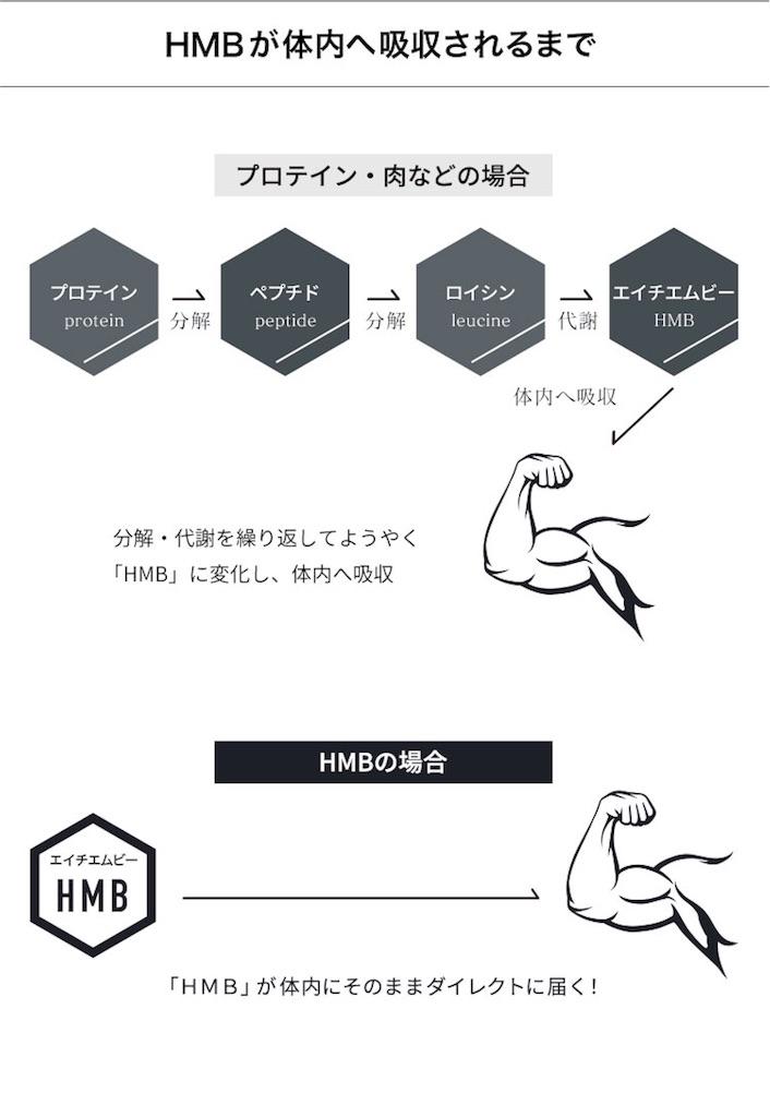 f:id:ryotaono4170:20181117120028j:image
