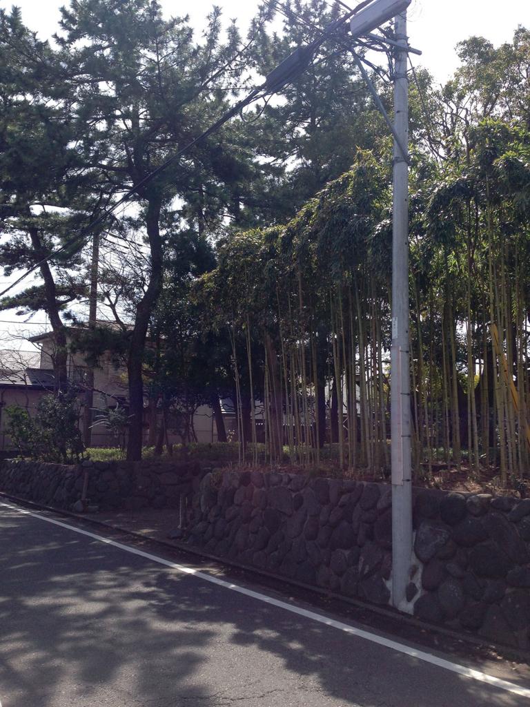 f:id:ryotaroshimizu:20180403105211j:plain