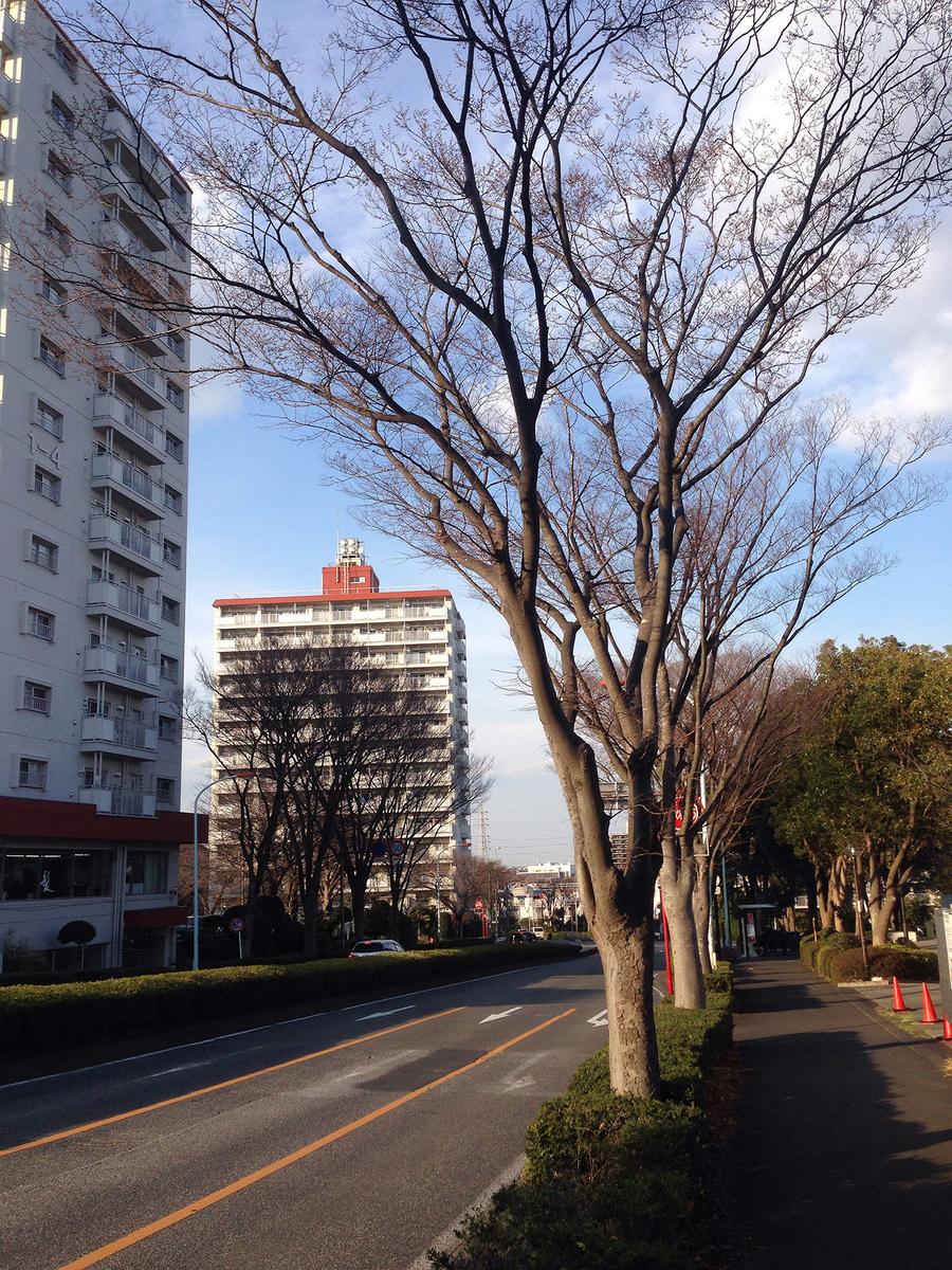 f:id:ryotaroshimizu:20190315191945j:plain