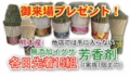 f:id:ryouma190:20151001200416j:image:medium