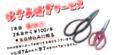 f:id:ryouma190:20151001200418j:image:medium