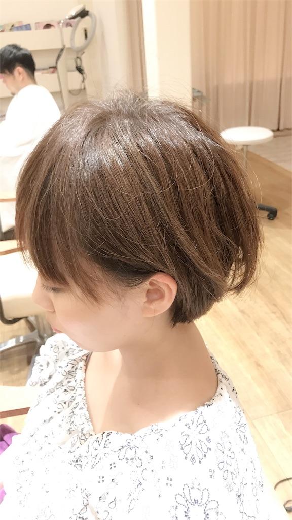 f:id:ryoumeiyamasaki:20180809171349j:image