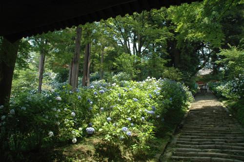 f:id:ryouse1366:20090627120801j:image