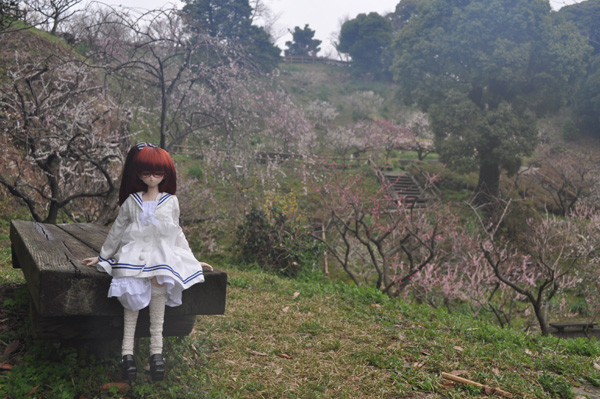 f:id:ryouse1366:20120321084839j:image
