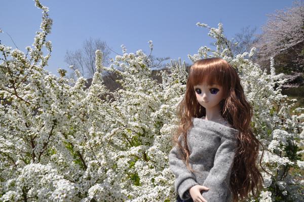 f:id:ryouse1366:20120409172239j:image
