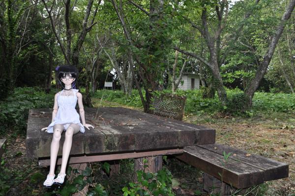 f:id:ryouse1366:20120701210046j:image