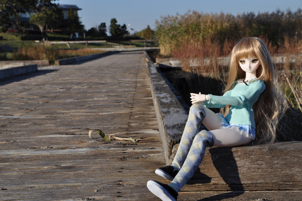 f:id:ryouse1366:20121117202041j:image