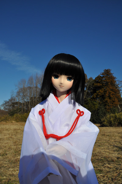 f:id:ryouse1366:20130101210134j:image