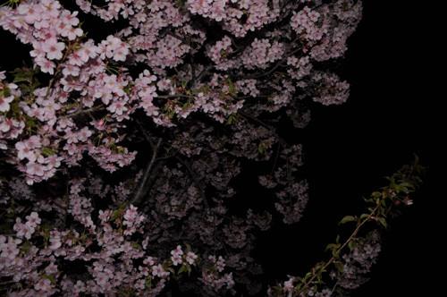 f:id:ryouse1366:20130322073419j:image