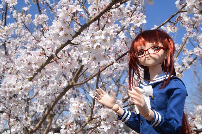 f:id:ryouse1366:20150330195709j:image