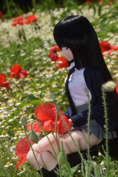 f:id:ryouse1366:20150518141719j:image