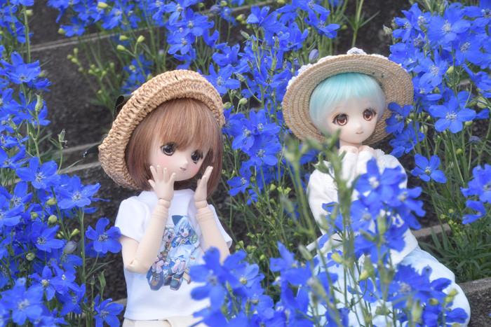 f:id:ryouse1366:20150530065603j:image